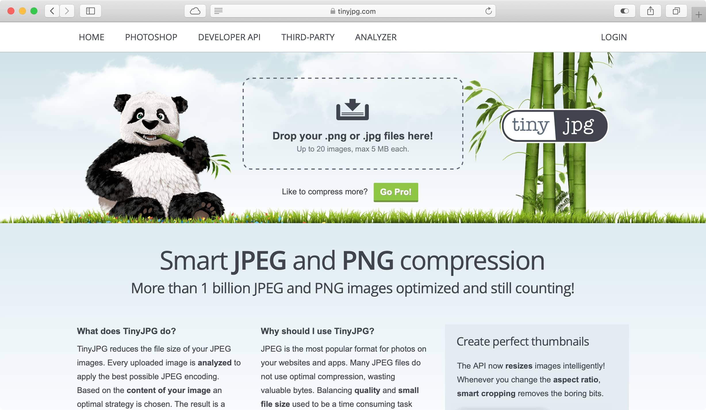 האתר Tiny JPG שמופיעה בו פנדה חמודה. ומי לא אוהב פנדות?